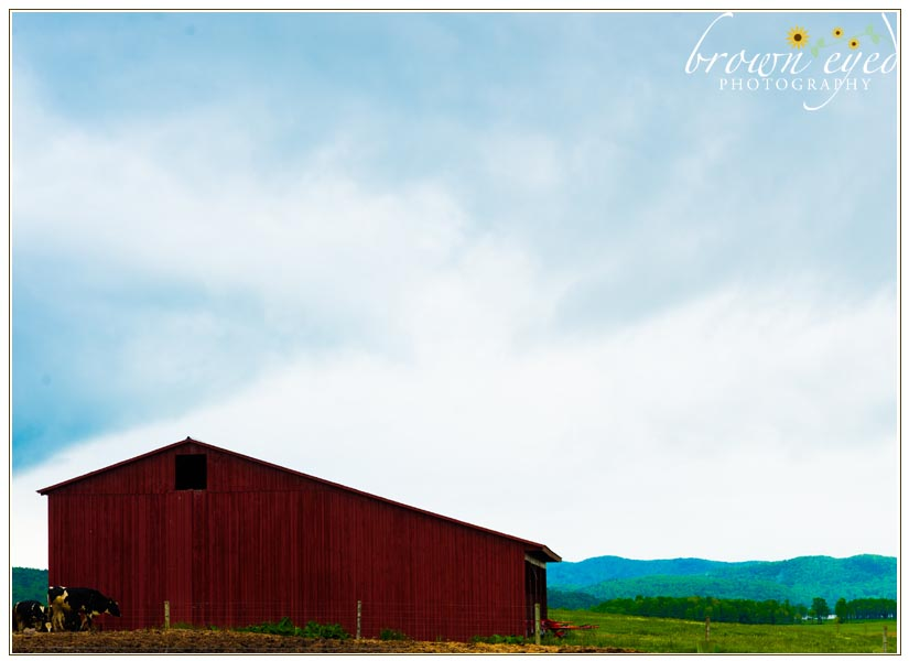 Farm-Photo-Shoot-Adirondacks