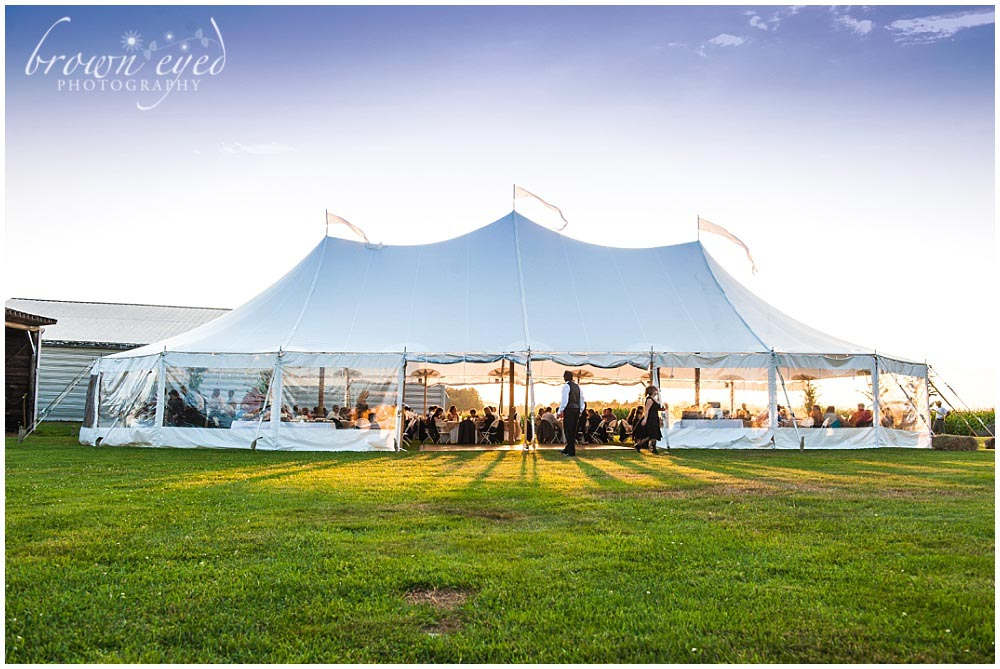 taylor rental wedding tent